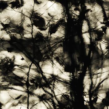 NATUERLICH KUNST – Landschaft im Spiegel der Kunst
