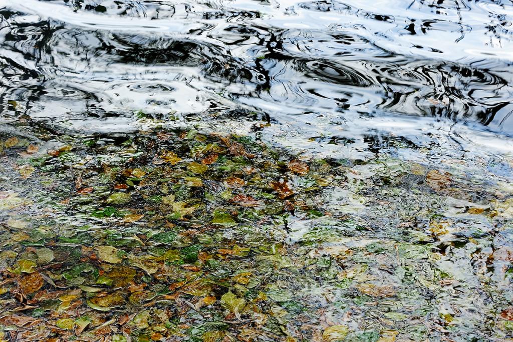 Herbst_CMU8752.jpg._033