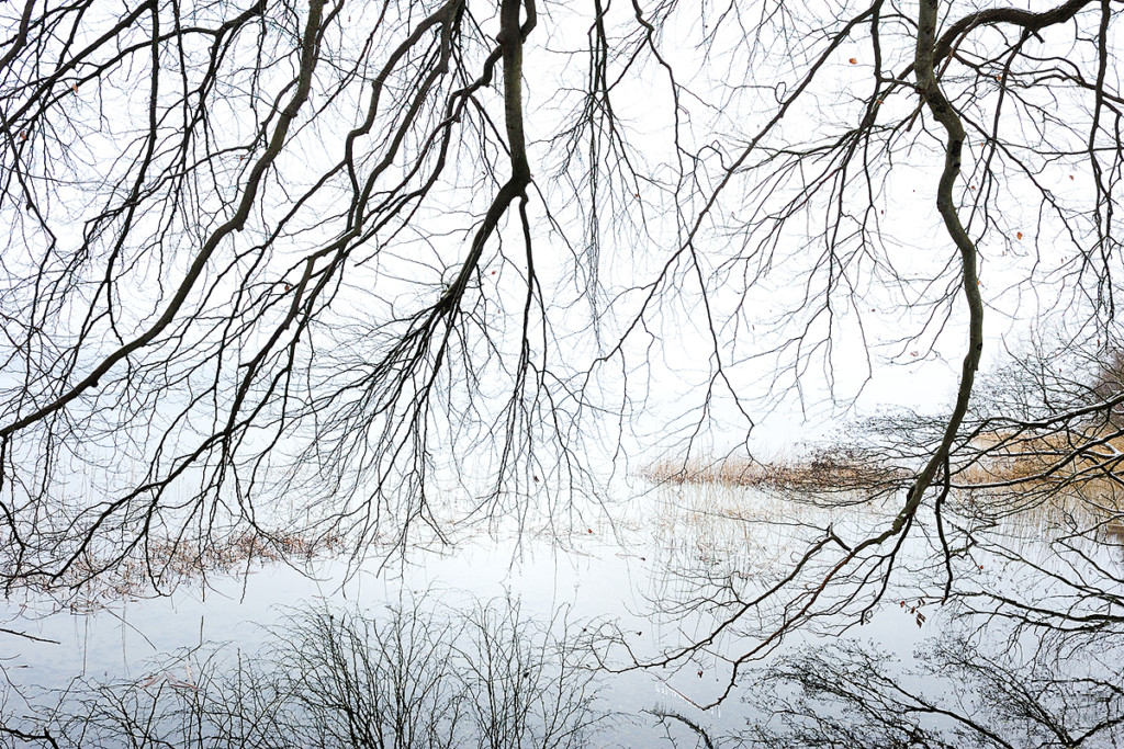 Winter_CMU2146._011